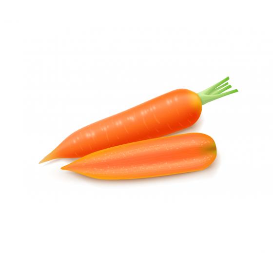 Для моркви