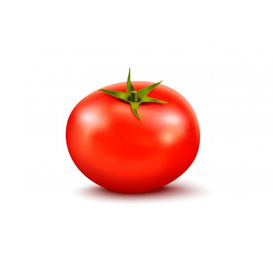 Для томатів закритого грунту